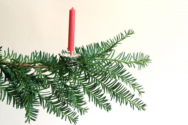 description - Christmas Tree Clips